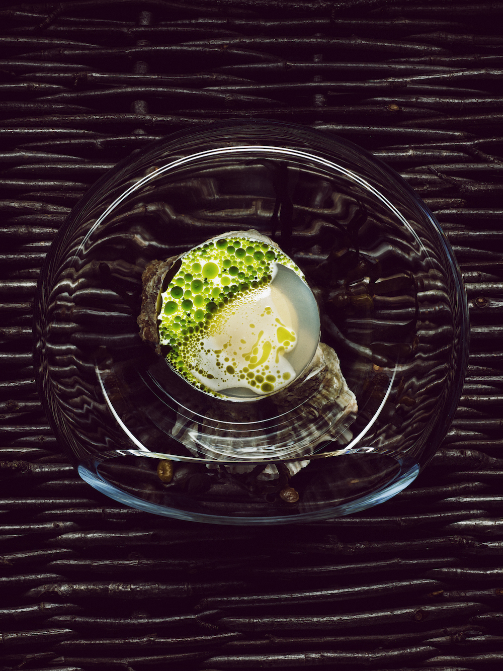 Art at Curate Series 3 Norwegian oysters with mussels and dill - Credit Tuukka Koski copy