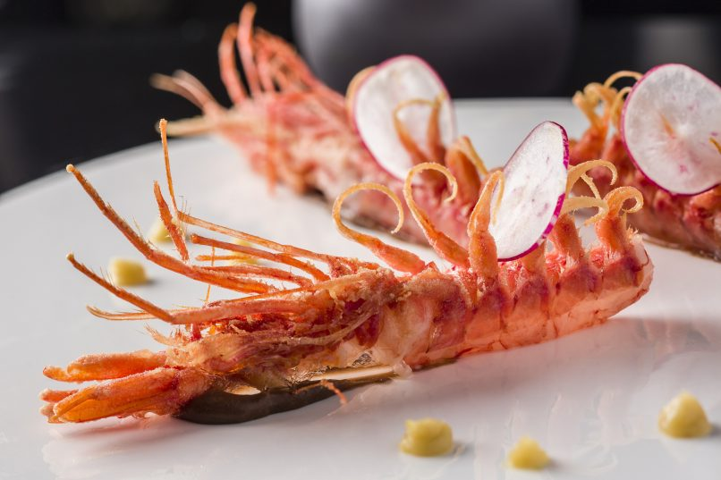 Sicilian red prawn
