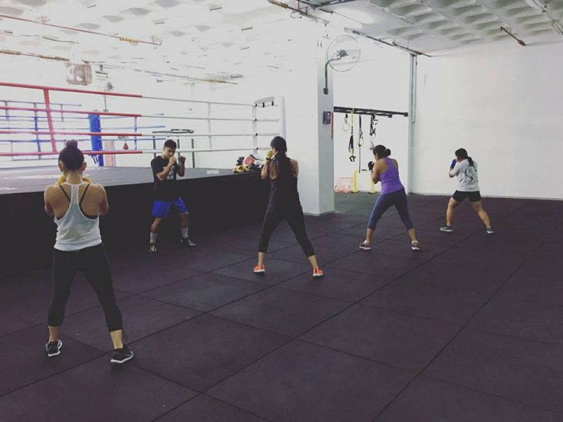 Boxing- Legends Fight Sport