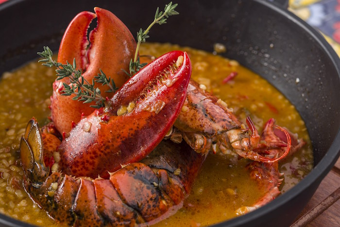 Alzina - Red Lobster Rice (1) (1)