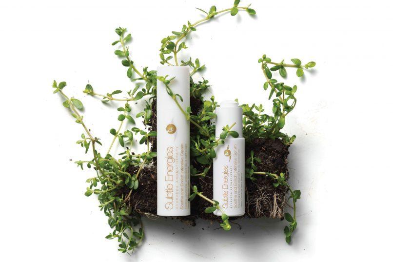 ayurveda aromatherapy - Subtle Energies skincare