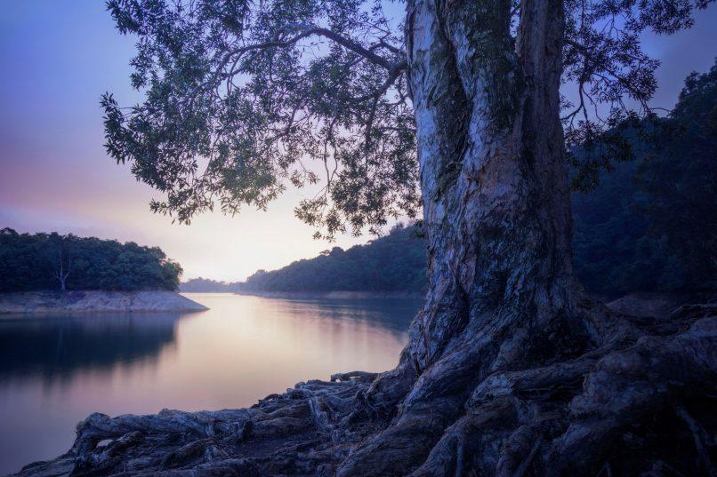 Vacheron Constantin Overseas Collection - Blue Hour - Shing Mun Reservoir