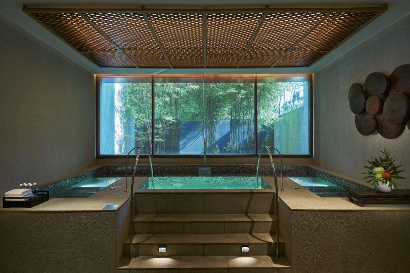 Vitality Pool auriga spa capella singapore