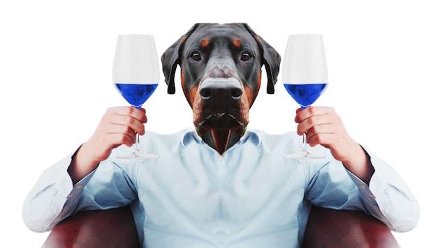 gik blue wine taste