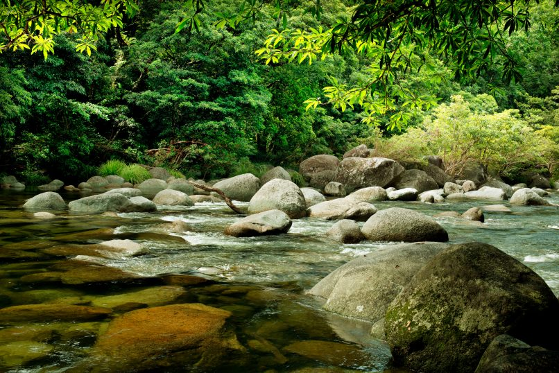 rainforest destinations