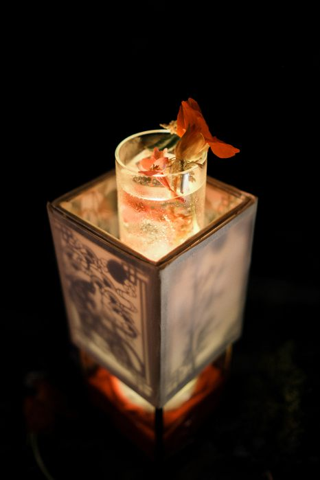 where to drink in Hong Kong March - Dr. Fern's Gin Parlour
