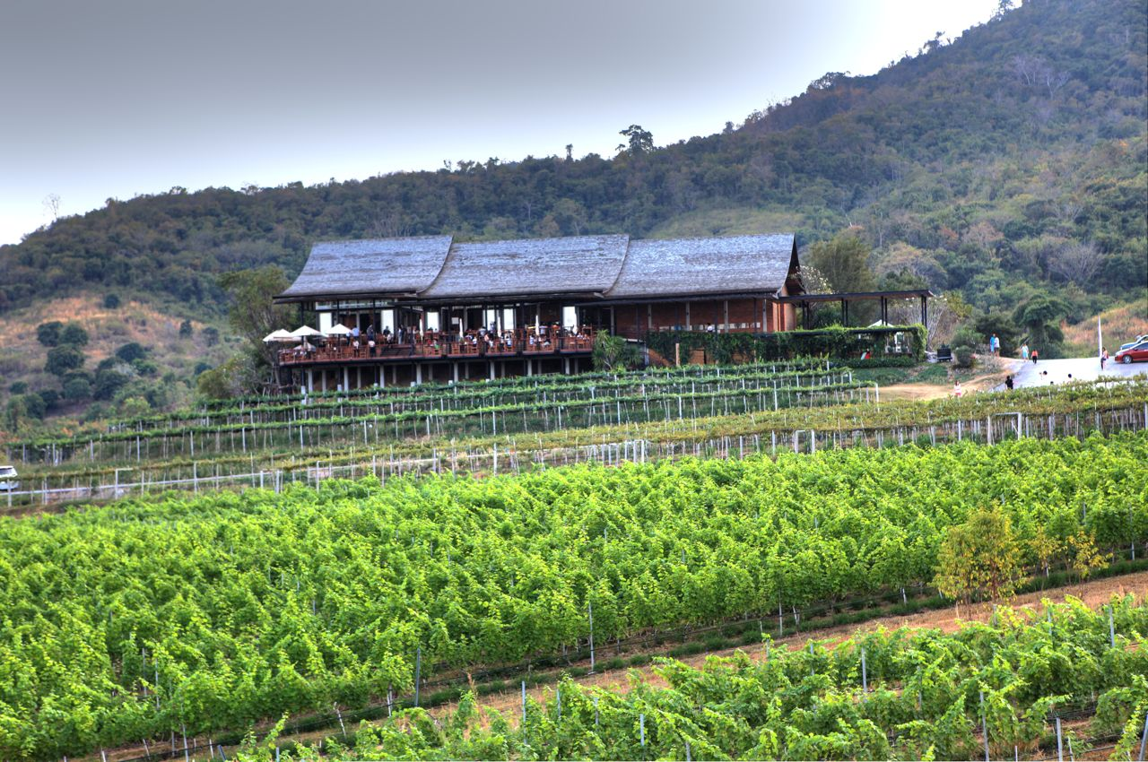 Monsoon Valley Vineyard, Hua Hin, Thailand