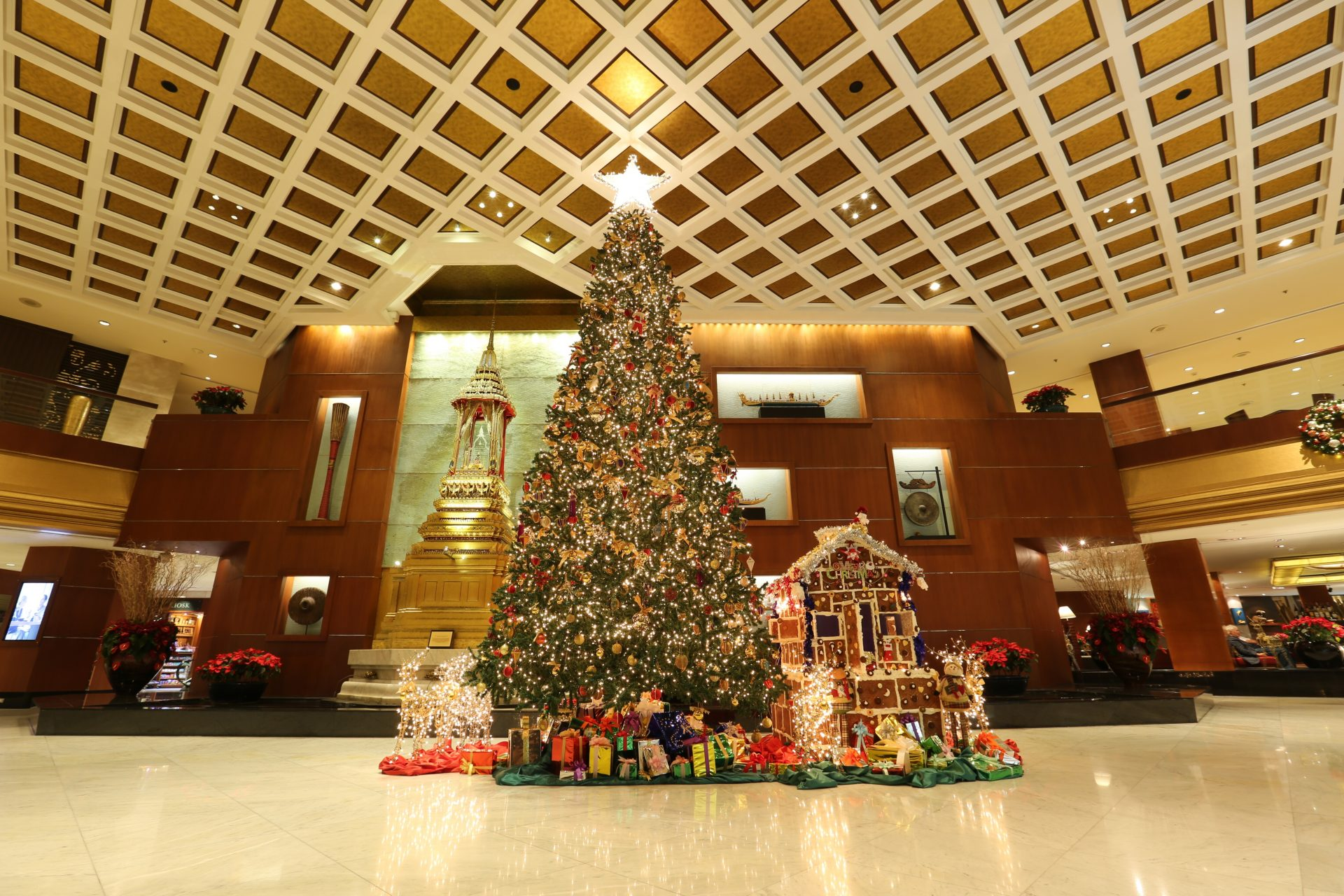 Orchid Christmas Tree.Festive Feasts Indulge This Holiday Season At Royal Orchid