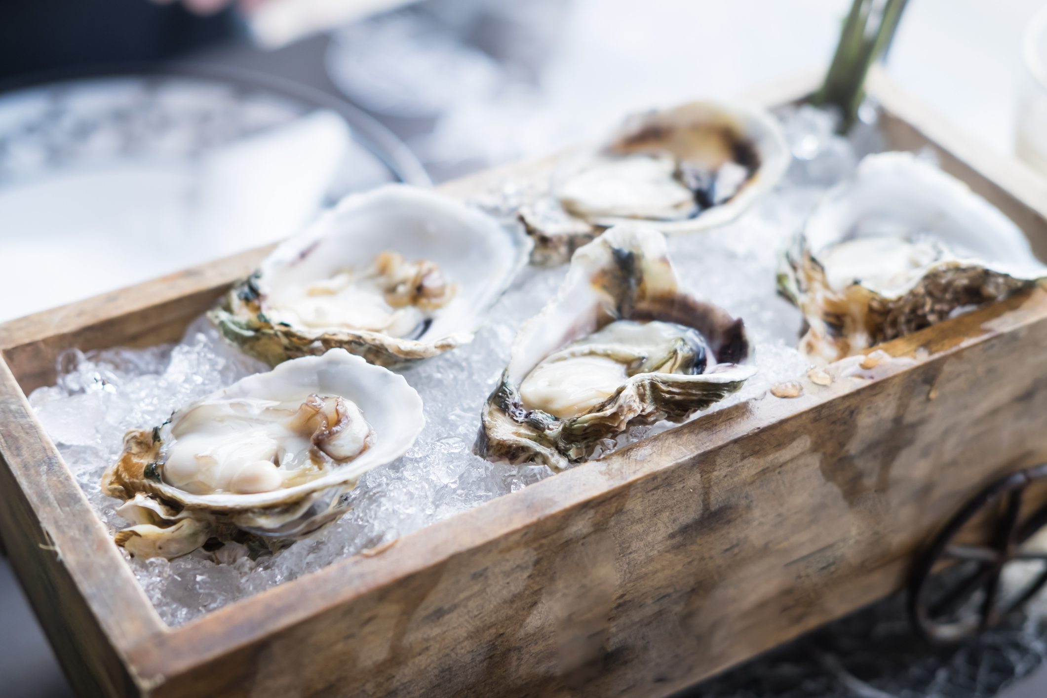 8 oyster bars in Singapore for the freshest shellfish