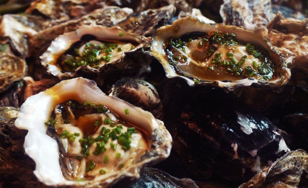 southbridge oysters the cheat sheet