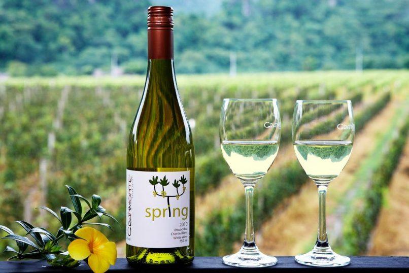 Thailand vineyards