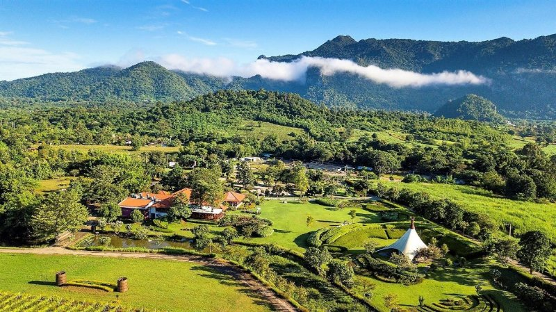 PB Valley Khao Yai Winery Thailand vineyards