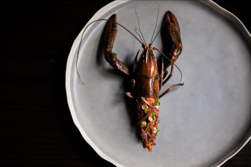 canvas crayfish