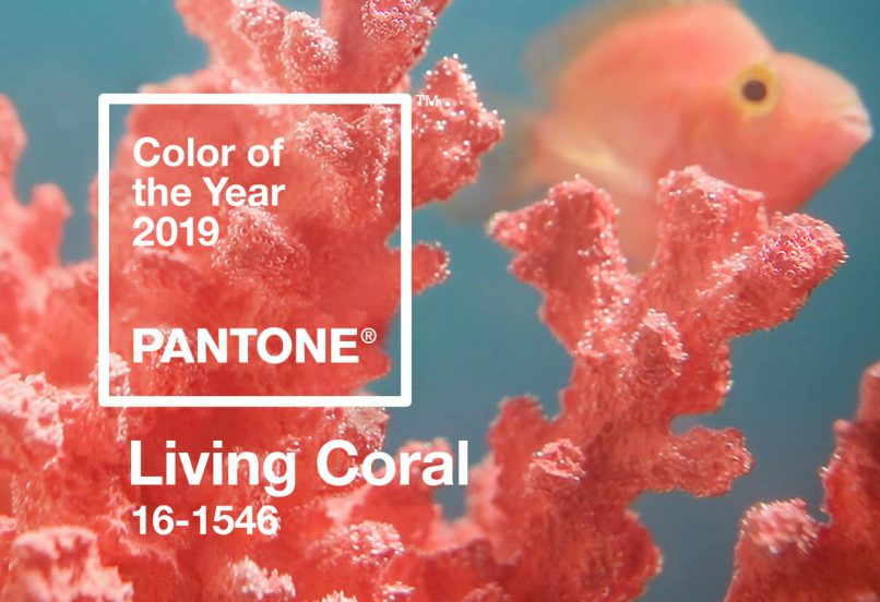 Pantone's 2019 colour of the year, 'Living Coral'