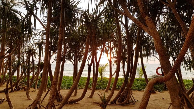 phuket luxury villa sunset bar review