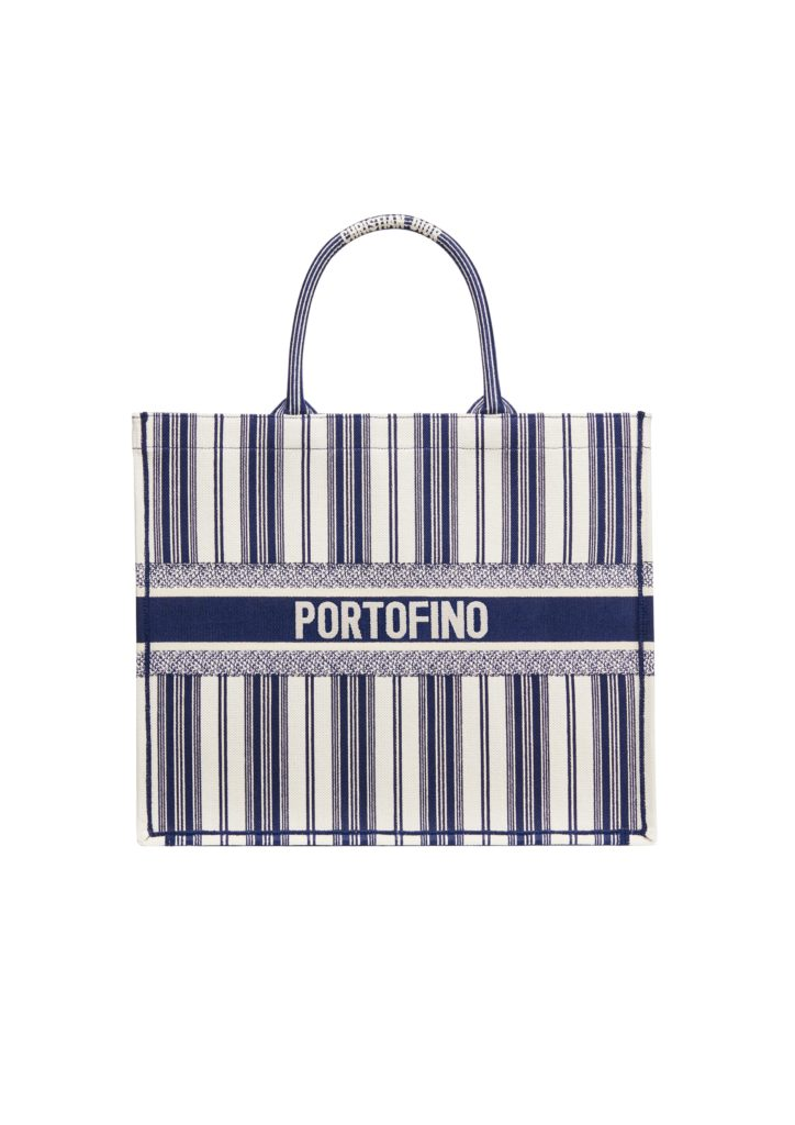 Dior book tote bag in embroidered canvas