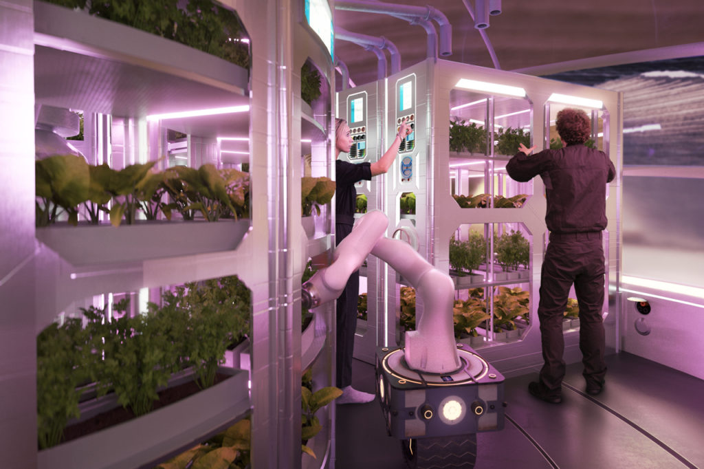 A preview of the futuristic gardens of Mars - courtesy of Hassell Studios