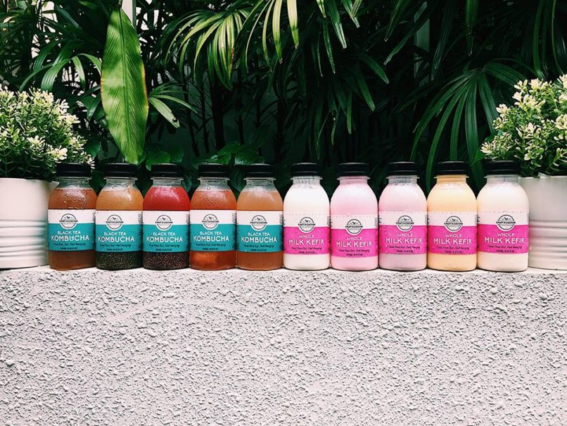 kombucha in singapore craft and culture