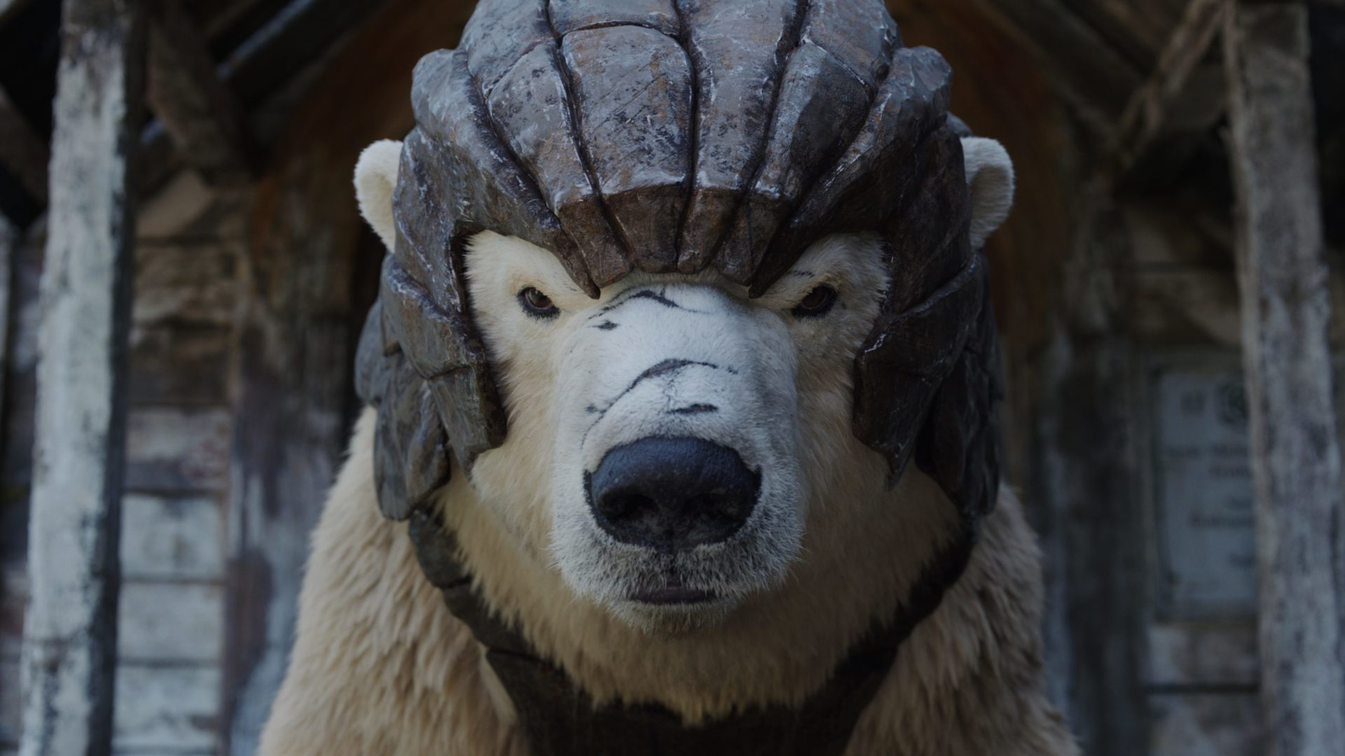 What's streaming - HBO - His Dark Materials